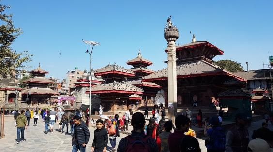 Les pigeons de Durbar Square
