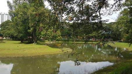 Et... la rivière qui passe dans le parc