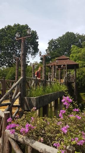 Le parc et son pont de bois