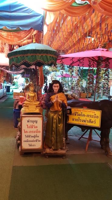Le robot thaï