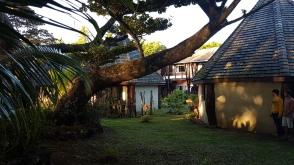 Le jardin derrière les bungalows