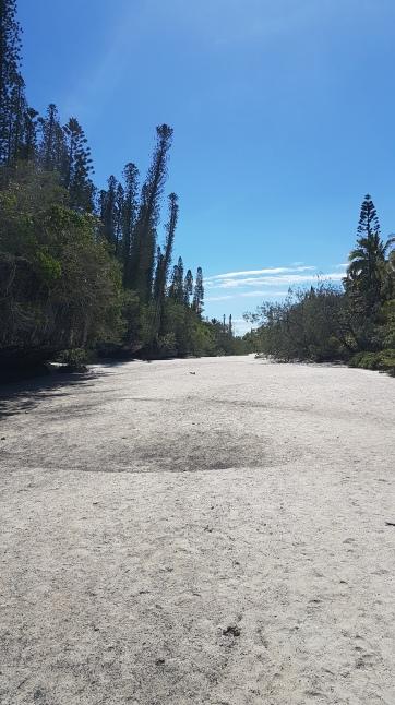 Chemin menant à la véritable baie d'Oro